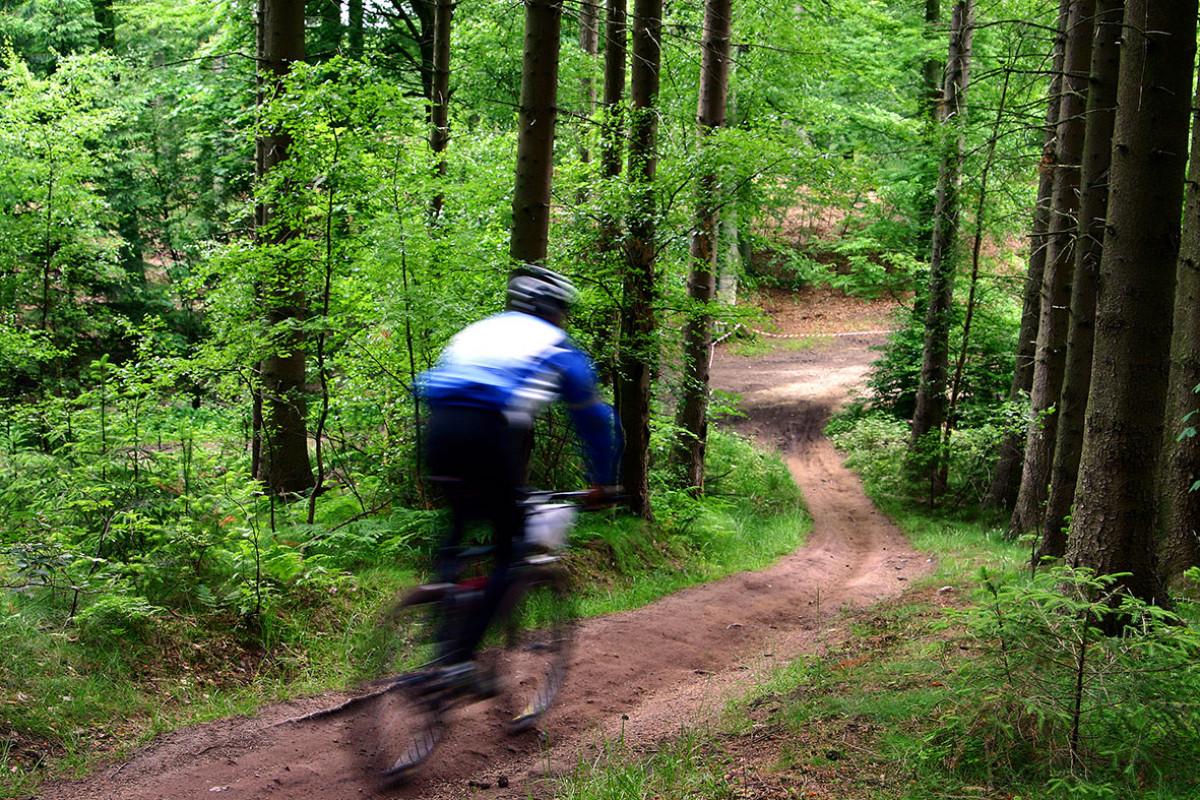 SBB - Mountainbikeroute Schoorlse Duinen